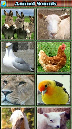幼児のための動物の音 玩教育App免費 玩APPs