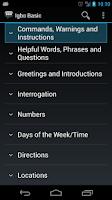 Screenshot of Igbo Basic Phrases