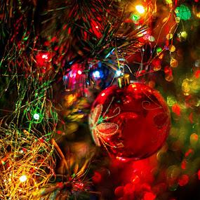 by John Bonanno - Public Holidays Christmas ( mood, mood factory, holiday, christmas, hanukkah, red, green, lights, artifical, lighting, colors, Kwanzaa, blue, black, celebrate, tis the season, festive, decoration, object )