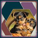HexSaw - Puppies icon
