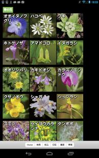 免費書籍App|散歩で見かける四季の花|阿達玩APP