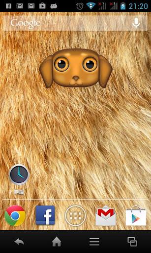Zoo Live Wallpaper - Dog