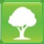 UF Campus Tree Guide