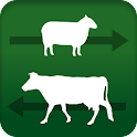 Stock Move Express icon