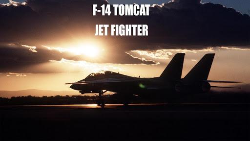 F14 Tomcat Jet Simulator