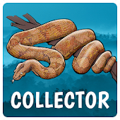 Perfect Earth Collector