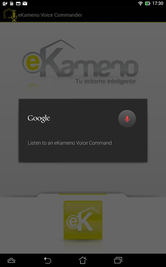 REMOTE Alarm & Home Automation - screenshot