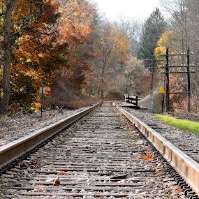 by Karen Jaffer - Transportation Railway Tracks (  )