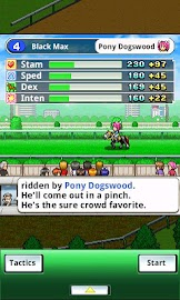 Pocket Stables Screenshot 5