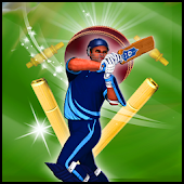 Cricket Fever 2014