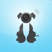Spy Watchdog