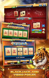 Cats & Dogs Casino -FREE Slots v1.7.764