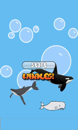 Whale Games