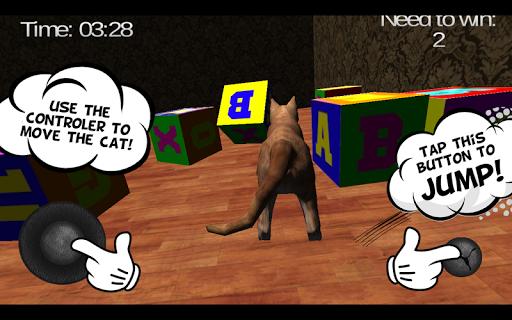 Talking Cat 2015