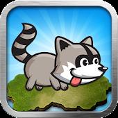 Raccoon running