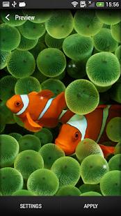 Mořští živočichové Živá Tapeta - náhled