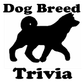 Dog Breed Trivia