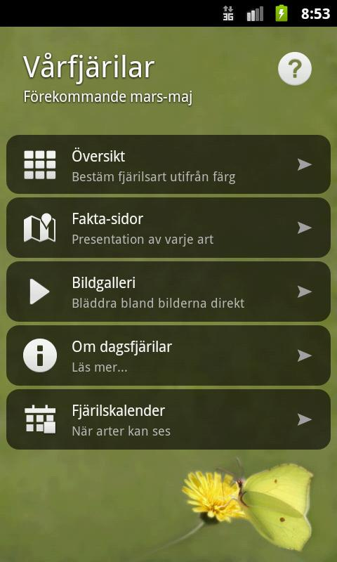 Vårfjärilar- screenshot