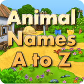 Animal Flash Cards A to Z
