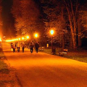 Night walking by Tihomir Beller - City,  Street & Park  Night ( park, street, night, walk, fear, city )
