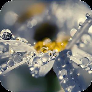 Waterdrop 生活 App LOGO-APP試玩