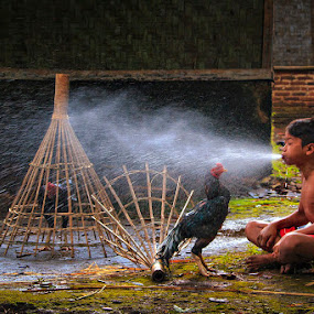 Morning Bath for Lovely Rooster by Andreas Sugiarto - Babies & Children Child Portraits