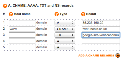 TXT record entered in the Result field.