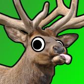 Super Elk Murder HD