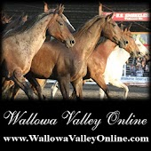 Wallowa Valley Online