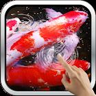 Water Effect: Bright Koi Fish icon