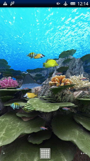App The coral reef vol.01 APK for Windows Phone | Download ...