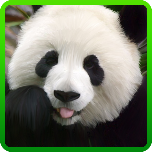 My Little Panda Wallpaper LOGO-APP點子