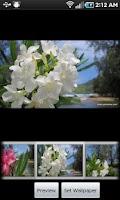 Screenshot of Kauai Flowers Pro