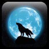 Moon&Wolf live wallpaper