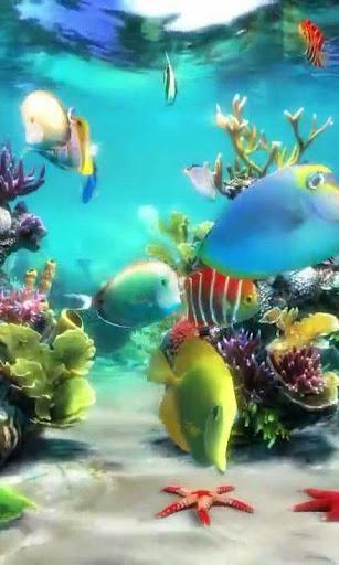 Aquarium 3 live wallpaper
