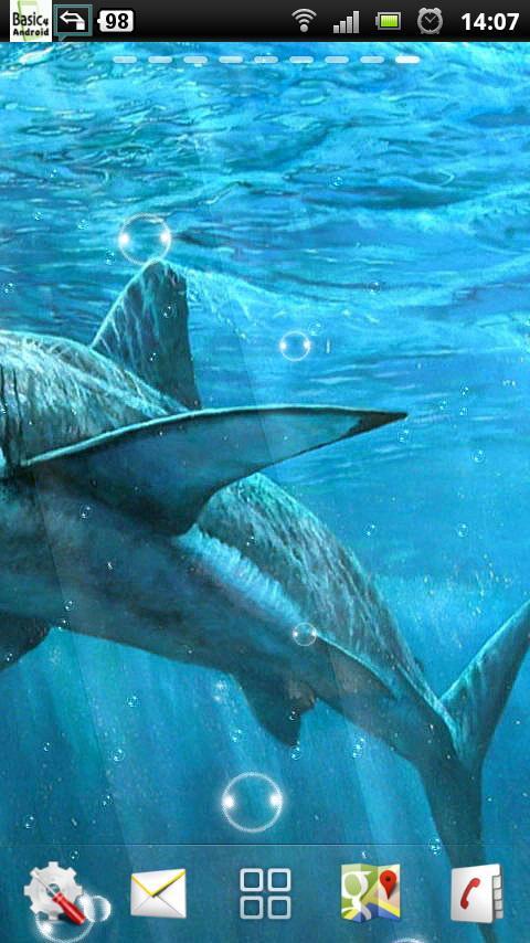 live shark wallpaper - photo #35