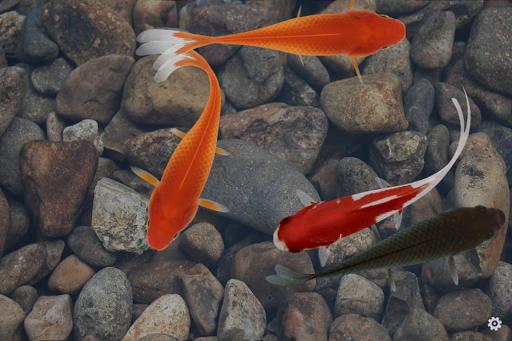 Beautiful Fish ScreensaverFree