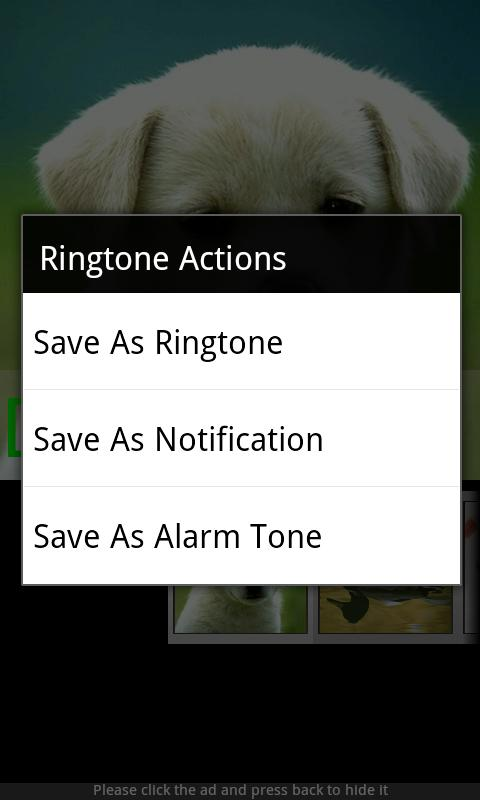 Animal Sounds & Ringtones- screenshot
