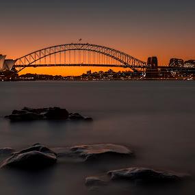Golden Hour on Sydney Harbour by Michael Lucchese - Landscapes Sunsets & Sunrises ( harbour bridge, sunsets, australia, long exposure, sunrise, nikon, opera house, sydney, photography, golden hour )