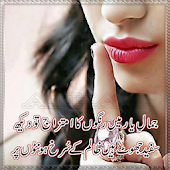 Urdu Design Poetry