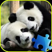 Panda Jigsaw Puzzle