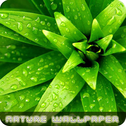 Nature Wallpapers LOGO-APP點子