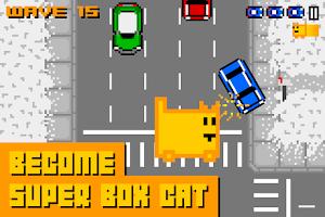 Screenshot of Box Cat