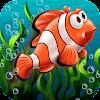 Fish Splash In Water