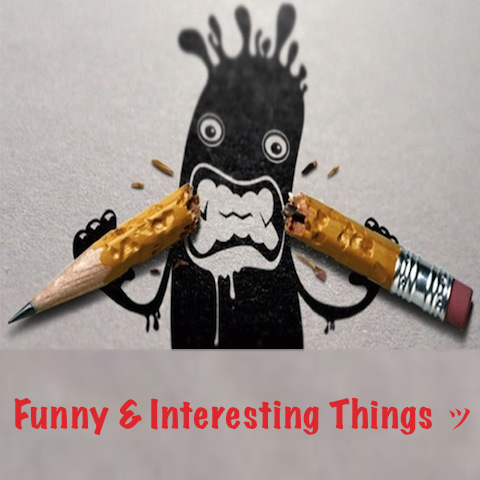 Funny Interesting Things ッ