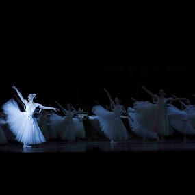 The Ballet by Hush Naidoo - People Musicians & Entertainers ( music, swan lake, ballerina, ballet, dance )