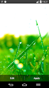 Yeşil doğa canlı duvar kağıdı screenshot thumbnail