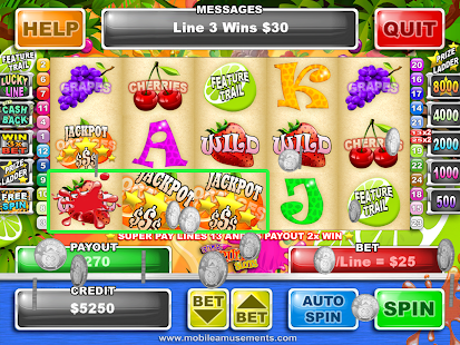 Super Fruit Slots - screenshot thumbnail