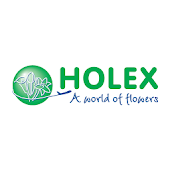 Holex Flower Shop