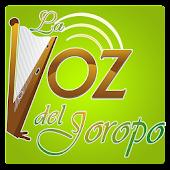 La VOZ del Joropo